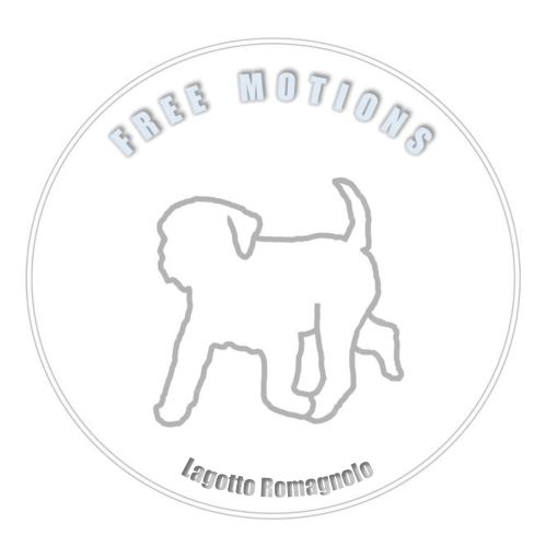 2020-10-09_Logo E1 Free Motions 0,25 MP.jpg